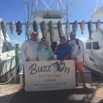 Islamorada fall fishing snappers