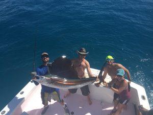 islamorada fall fishing sailfish
