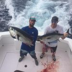 Islamaorada fall fishing blackfin tuna