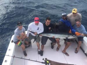 sailfishing on Buzz On