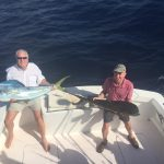 islamorada fall fishing dolphin