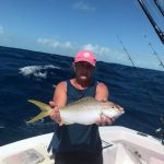 large yellowtail snapper Islamorada