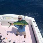 Islamorada fishing report mahi mahi