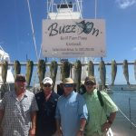 Buzz on Islamorada